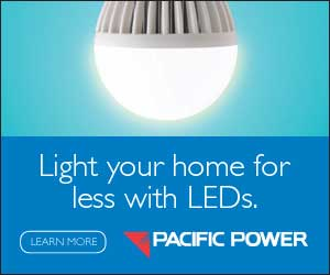 Pacific Power Light with LEDs