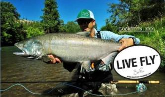 Live Fly fishing trip