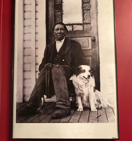 washington george dog framed