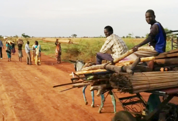 People fleeing violence in south sudan