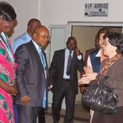 WHO official arrives in Guinea