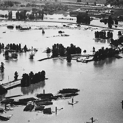 Homes floating on the Willamette River during the Vanport flood