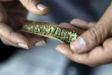 150629 marijuana biz
