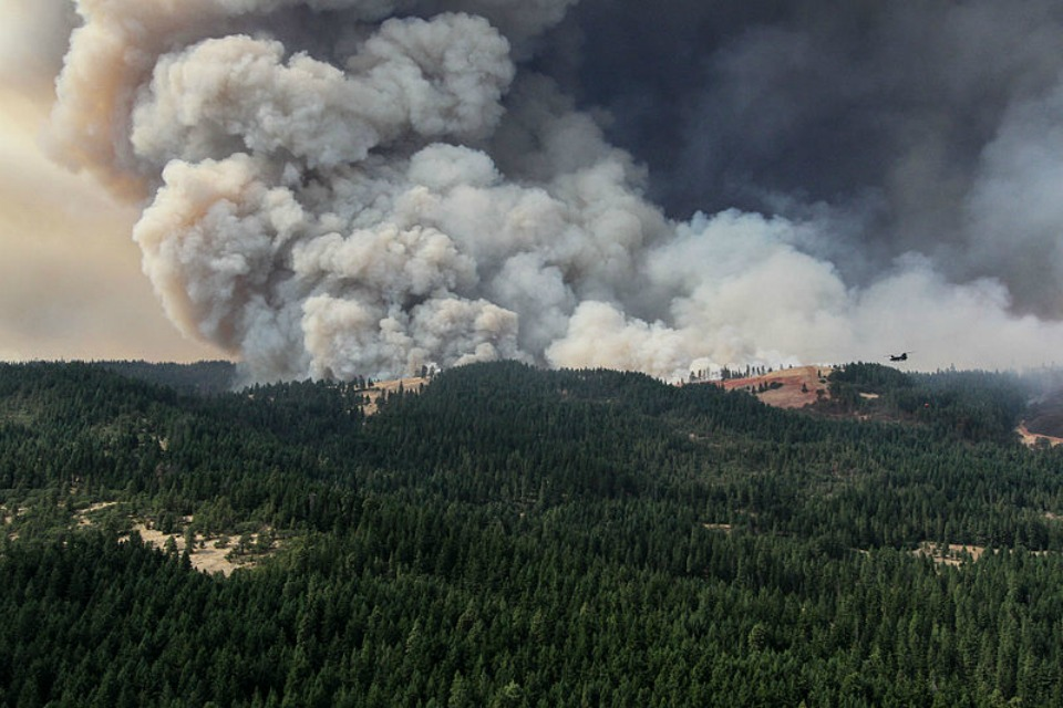 Forest fire near The Dalles, Ore., Aug. 2013 (Oregon Military Department)