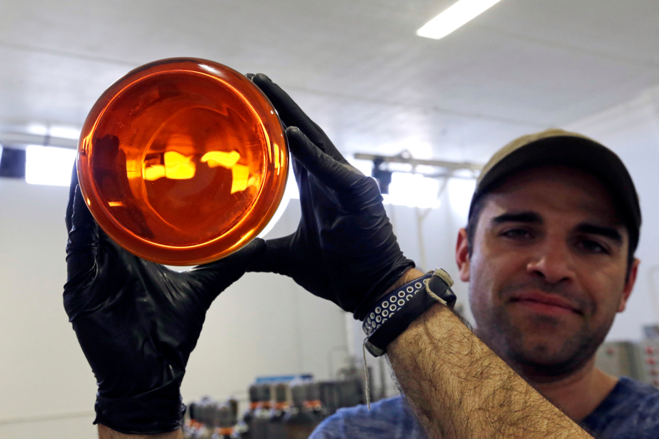 Julian Cabrera, factory manager at New Earth Biosciences, holds up a large glass beaker to the light containing thick, golden-colored, fully-refined CBD oil in Salem, Ore.(AP Photo/Don Ryan)