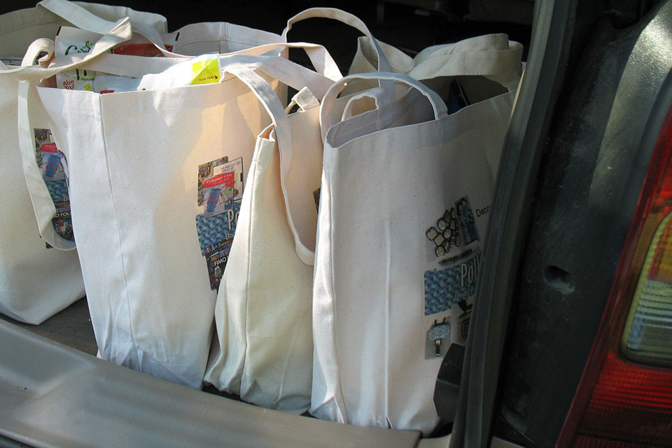tote bags with groceries in back seat of car
