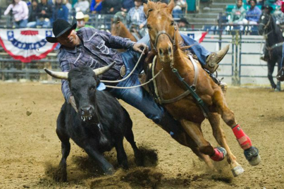 Thousands of spectators gather to watch black cowboys and cowgirls compete in eight major rodeo events. (Photo Courtesy: NNPA)