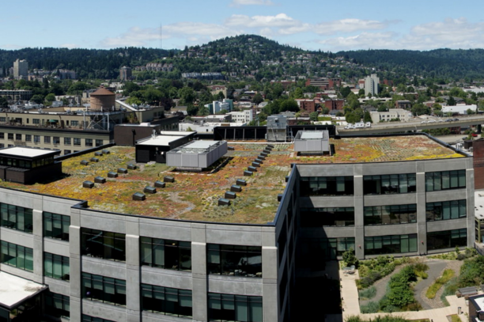A greenroof in Portland, Ore. (Photo: SamChurchill/Flickr)