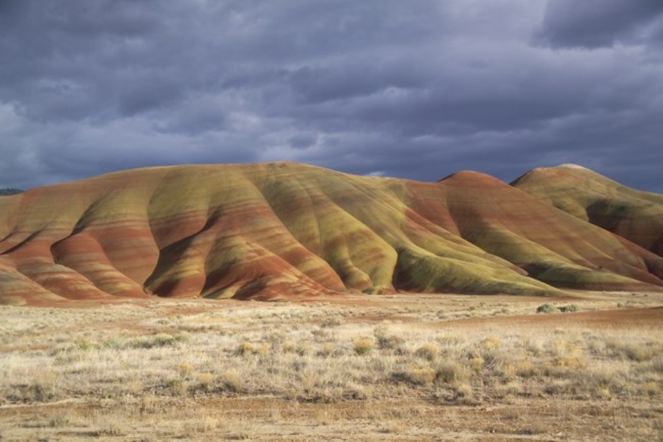 The 40-million-year-old fossil discovered at the John Day Fossil Beds in eastern Oregon, above, is from a Harpagolestes. Photo Courtesy: National Park Service)