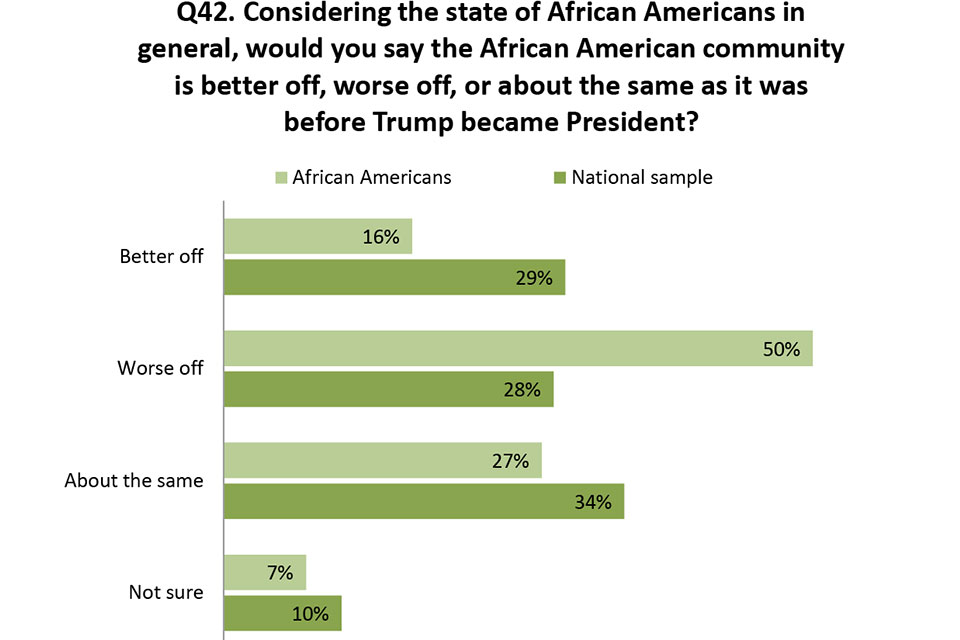 African American Survey