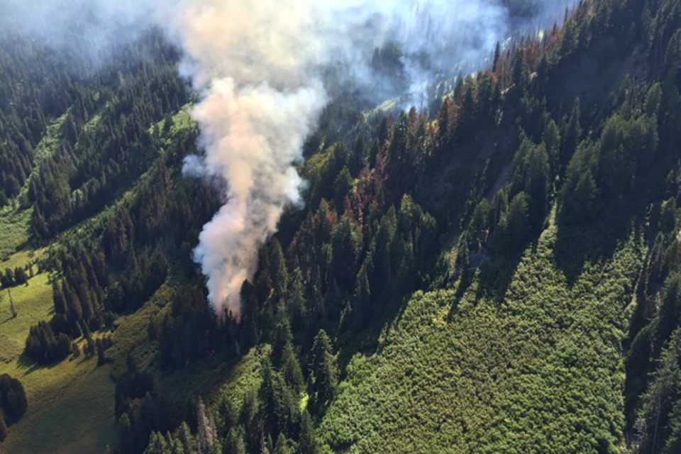 Cox Valley Fire, Olympic NP, August 2016 (Photo Courtesy: National Park Service)