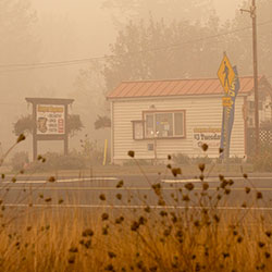 Canyon Expresso survived the Beachie Creek Fire east of Salem, Ore., Sunday, Sept. 13, 2020. (Rob Schumacher/Statesman-Journal via AP, Pool)