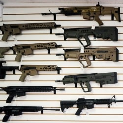 Second Amendment Sanctuaries Facing 1st Court test in Oregon